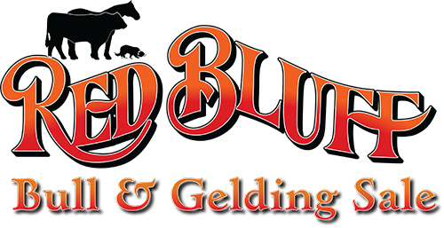 Red Bluff Bull & Gelding Sale