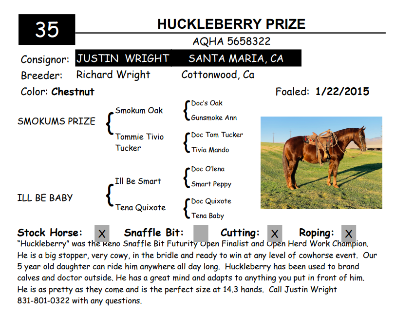 Lot 35 - HUCKLEBERRY PRIZE