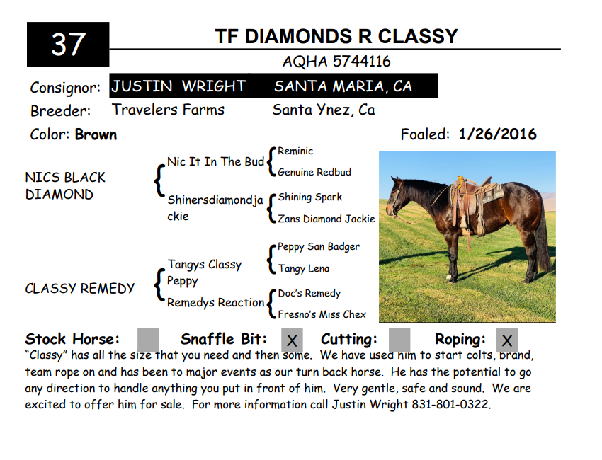 Lot 37-TF DIAMONDS R CLASSY