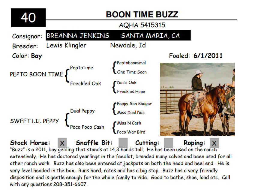 Lot 40 - BOON TIME BUZZ